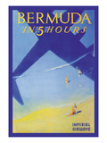 Bermuda in 5 Hours Posters by Paul George Lawler