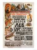 World of Animals Posters by V. Mukhanov