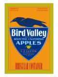 Bird Valley Brand Apples Poster