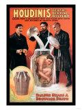 Houdini's Death-Defying Mystery - Tablo