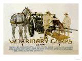 Veterinary Corps. U.S. Army Posters by  Schreck