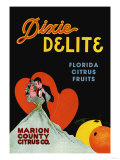 Dixie Delight Posters