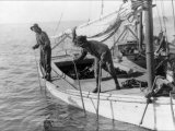 Fishing Oysters in Mobile Bay Posters by Lewis Wickes Hine