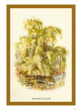 The Weeping Willow Print by W.h.j. Boot