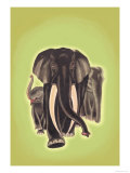 Indian Elephants Poster by Robert Harrer
