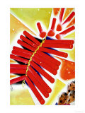 Chinese Fire Crackers Print by Frank Mcintosh