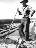 Migrant Irrigator Photo by Dorothea Lange