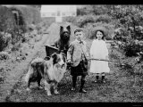 Boy and Girls with Two Dogs and a Wagon Prints