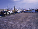 New Bedford Fishing Boats Photo by William B. Folsom