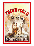 Fresh and Cold, Direct from the North Pole Posters van F. Klemm