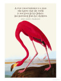 True Conservationist Poster by John James Audubon