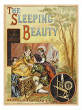 The Sleeping Beauty in the Wood Photo