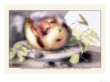 Dish with a Pomegranate, A Grasshopper, A Snail, and Two Chestnuts Premium Giclee Print by Giovanna Garzoni