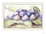 Dish of Figs Posters by Giovanna Garzoni