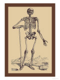 Skeleton with Shovel Kunstdrucke von Andreas Vesalius