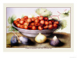 Dish of Cherries with Figs and Medlars Premium Giclee Print by Giovanna Garzoni