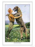 Irish Wolfhound Art by Louis Agassiz Fuertes