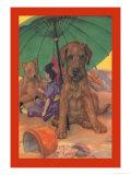 Dog on a Beach Premium Giclee Print by Diana Thorne