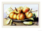 Dish of Peaches with a Cucumber Posters por Giovanna Garzoni