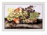 Grapes and Pears with a Snail Print by Giovanna Garzoni