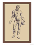 Man Prints by Andreas Vesalius