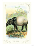 The Tapir Print