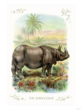 The Rhinoceros Posters