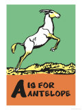 A is for Antelope Prints by Charles Buckles Falls