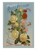 Our New Guide to Rose Culture, 1894 Premium Giclee Print