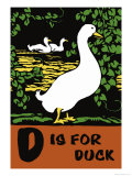 D is for Duck Posters by Charles Buckles Falls