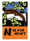 N is for Newt Posters by Charles Buckles Falls