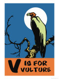 V is for Vulture Prints by Charles Buckles Falls