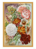 My Bouquet Collection of Five New Floral Beauties Posters