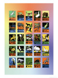 Animal Alphabet Posters by Charles Buckles Falls