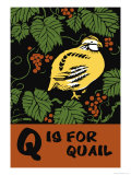 Q is for Quail Posters by Charles Buckles Falls