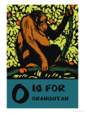 O is for Orangutang Prints by Charles Buckles Falls
