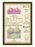 Alencon Lace and Regal Broadcloth Brassieres Posters