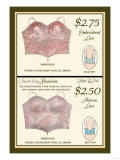 Embroidered Lace and Alencon Lace Posters