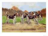 Group of Gascon-Saintongeois Foxhound Crosses Prints by Baron Karl Reille