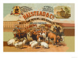 Halstead and Company Beef and Pork Packers Poster von Richard Brown