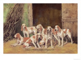Franche Comet Hounds Prints by Baron Karl Reille