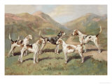 Fell Foxhounds Posters by Thomas Ivester Llyod