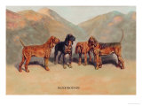 Bloodhounds Art by Thomas Ivester Llyod