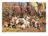 Griffon Vendeen Bassets Prints by Baron Karl Reille