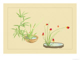 Bamboo, Narcissus, and Lily Prints by Sofu Teshigahara