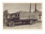 Livestock Truck Posters