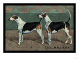 Two Fox Hounds Prints