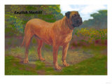 English Mastiff Champion Posters