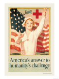 America's Answer to Humanity's Challenge Posters by H. Hayden