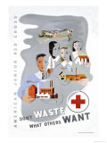 Don't Waste What Others Want: American Junior Red Cross Premium Giclee Print by Dagmar Wilson